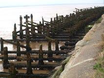 Skala marina och att promenera floden Humber och skeppsdockor Arkivfoton