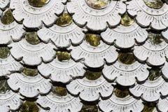 Skala Naga, tekstury Obraz Stock