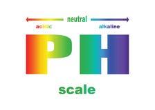 Skala ph wartość dla zjadliwych i alkalicznych rozwiązań Zdjęcie Stock