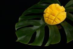 Skalad ananas p arkivbilder