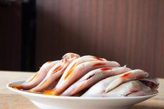 Skalad flodfisk för soppa lies för fiskeis bara blockerade vinterzander Royaltyfria Foton