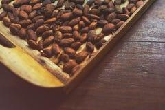 Skalad kakaoböna på träyttersida Fotografering för Bildbyråer