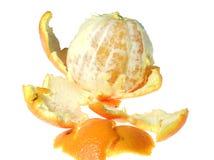 skalad mandarine arkivfoto