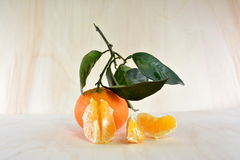 Skalad tangerin med sidor och trädet Arkivbild