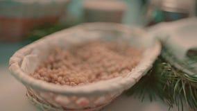 Skalade Cedar Nuts stock video
