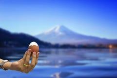 Skalade och kokade ägg ser som fuji mt Royaltyfri Foto