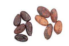 Skalade och unpeeled kakaobönor som isoleras på bästa sikt för vit bakgrundsnärbild Royaltyfri Bild