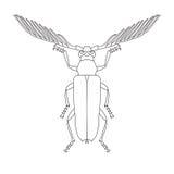 Skalbaggar beetle Cyriopalus wallacei. Sketch of Skalbaggar beetle. Skalbaggar beetle isolated on white background. hand. Drawn Skalbaggar beetle. Vector Stock Photos