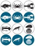 skaldjur stock illustrationer