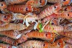 skaldjur Royaltyfria Foton