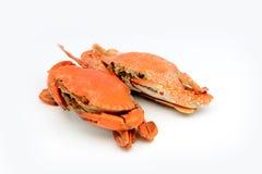 Skaldjur förberedda kokade krabbor Arkivbilder