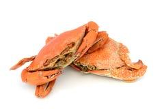Skaldjur förberedda kokade krabbor Arkivbild