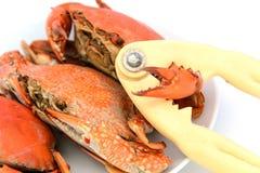 Skaldjur förberedda kokade krabbor Arkivfoton