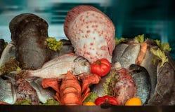 Skaldjur i fiskmarknad royaltyfria foton