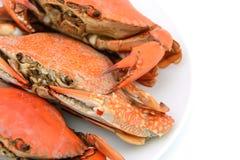 Skaldjuret lagade mat krabbor pläterar på Royaltyfri Bild