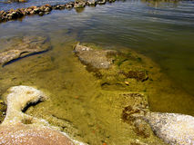 skaliści brzegu Obrazy Royalty Free