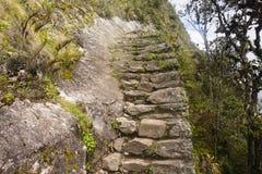 Skaliści kroki Mach Picchu Zdjęcia Stock
