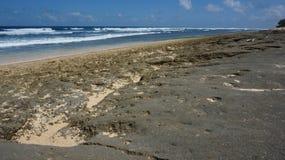 Skalista Bali plaża Zdjęcia Royalty Free