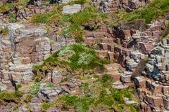 Skalista ściana Zdjęcie Stock