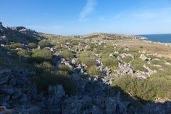 Skalista dolina Obraz Stock