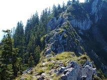 Skalista góra na Bawarskich Alps Zdjęcie Stock
