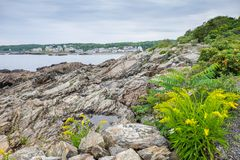 Skalista linia brzegowa na chmurnym dniu w Maine Zdjęcie Stock