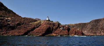 Skalista linia brzegowa w Avalon półwysepie, wodołaz, Kanada obraz stock