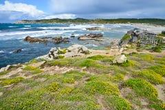 Skalista linia brzegowa w Sardinia, Włochy zdjęcia royalty free