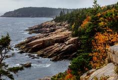 Skalista linia brzegowa z ulistnienie kolorami Obraz Royalty Free