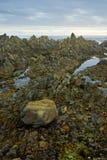 Skalista plaża i linia brzegowa fotografia royalty free