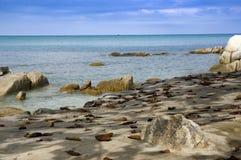 Skalista plaża w Koh Samui, Tajlandia Fotografia Royalty Free
