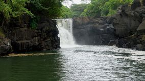 Skalista, tropikalna dżungli siklawa na Mauritius, Fotografia Stock