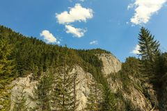 Skaliste góry Bicaz, Rumunia - fotografia royalty free