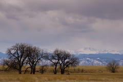 Skalistej góry arsenału obywatela rezerwat dzikiej przyrody Obrazy Stock