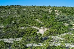 Skalistej góry Dalmatia krajobraz zdjęcia royalty free