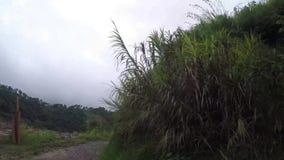 Skalistej góry przesmyka zygzag niewygładzona wijąca droga na falezach Cordillera zbiory wideo