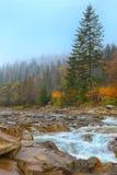 Skalistej góry rzeka w jesieni Zdjęcie Royalty Free