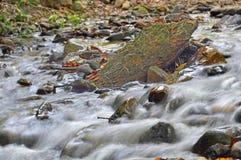 Skalistej góry strumień w górnej Swansea dolinie, południowe walie, Brecon bakany Zdjęcia Royalty Free