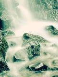 Skalistej góry strumienia powierzchni jesieni liście Celowniczy zdjęcia stock