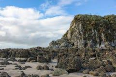 Skalistej plaży brzeg z piękną zielenią zakrywał małego wzgórze lub falezę z zielonymi roślinami i trawą na nim fotografia stock
