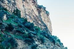 Skalisty życie krajobraz | Bighorn obrazy stock
