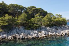 - skalisty brzeg i kryształ jaśni nawadnia Adriatycki morze Fotografia Stock