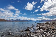 Skalisty brzeg Jeziorny Tekapo obraz stock