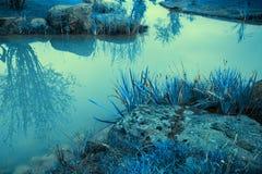 Skalisty brzeg rzeki obraz stock