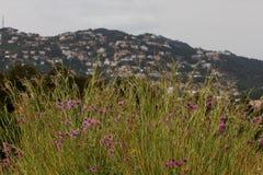 Skalisty brzegowy Lloret De Mar, Hiszpania obraz stock