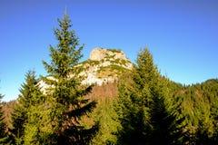 Skalisty halny szczyt z lasowymi drzewami w przedpolu obraz royalty free