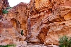Skalisty jaru ` Siq ` w Przegranym mieście Petra, Jordania obrazy royalty free