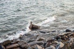 Skalisty jeziorny brzeg Obrazy Royalty Free