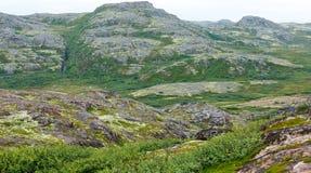 Skalisty kamienia wybrzeże Barents morze, przerastający z mech obrazy stock