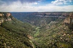 Skalisty krajobraz piękny mesy Verde park narodowy, Kolorado zdjęcia stock